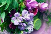 Flower Market © BIKINI BERLIN